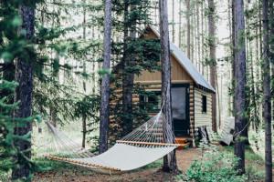 Retreat-Urlaub: Mitten im Wald steht ein kleines Holzhaus, davor ist eine Hängematte gespannt. Digital Detox im Wald.