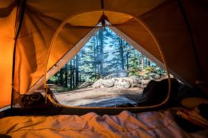 Retreat-Urlaub in der Natur. Der Blick fällt durch ein geöffnetes Zelt hinaus in den Wald. Man blickt auf Bäume und den Rauch eines erloschenen Lagerfeuers.