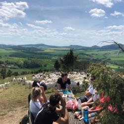 TreeYourMind | Achtsamkeit und Entspannung bei einer Wanderung in Nordhessen