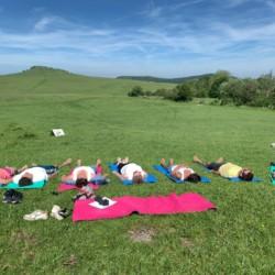 TreeYourMind | Yoga in der Natur ist Teil des Angebots von TreeYourMind